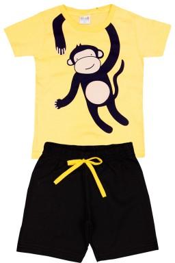 ref macaco conj